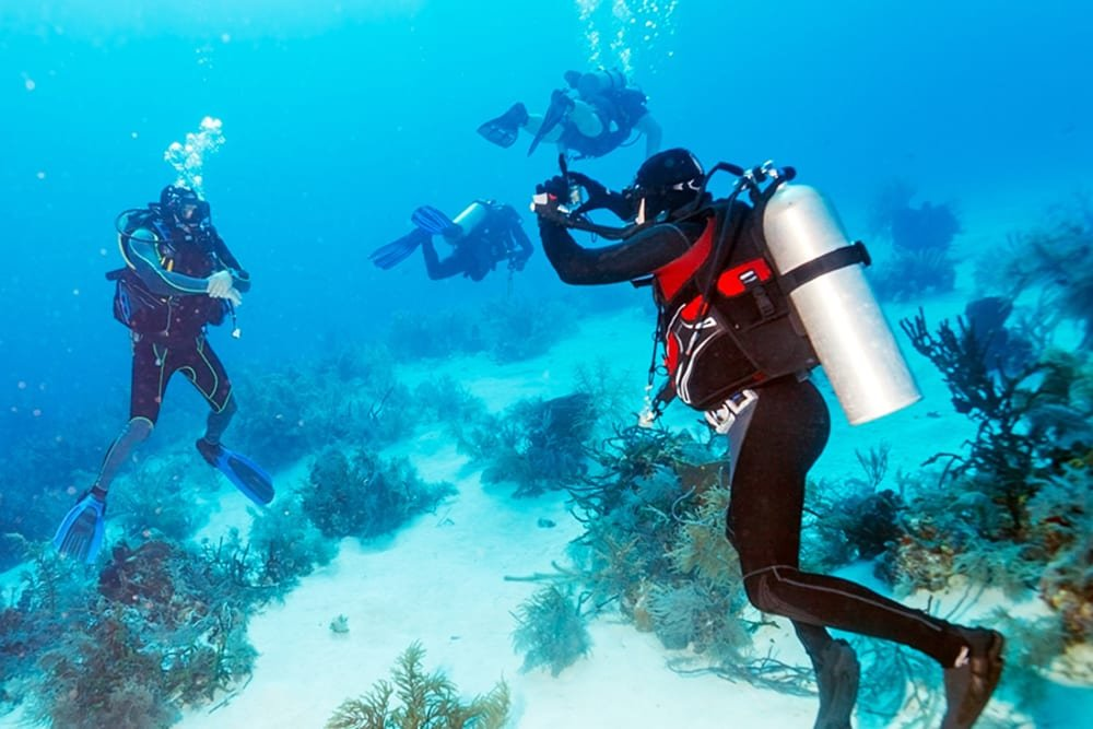 Scuba in Cuba: A Guide to the Best Dive Sites